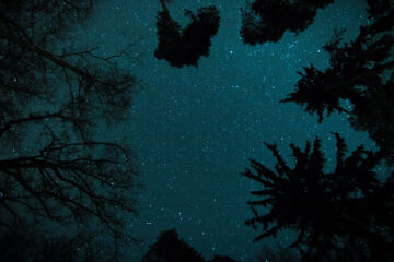 A Clear Midnight, a poem written by Walt Whitman at Spillwords.com