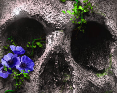 The Skull, micropoetry written by Martina Rimbaldo at Spillwords.com