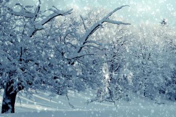 Winter Magic, poetry written by JOHN BAVERSTOCK at Spillwords.com