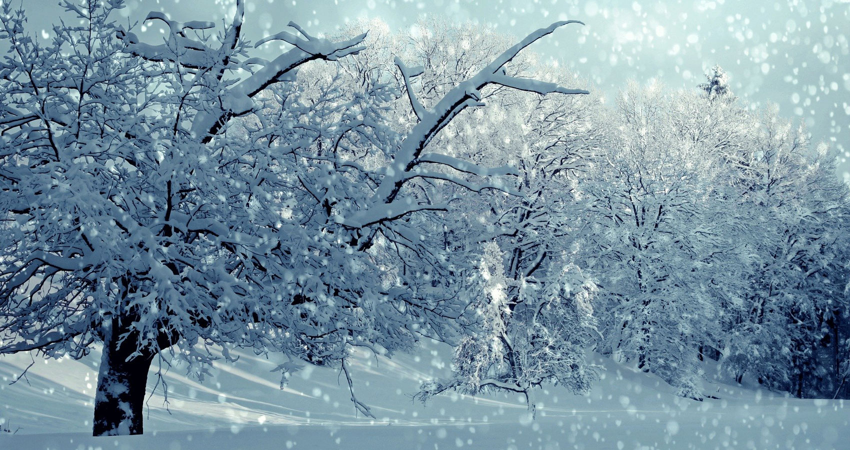 Winter Magic, poetry written by JOHN BAVERSTOCK at Spillwords.com