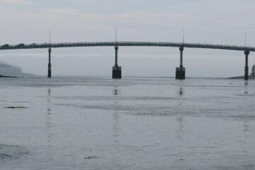 FDR Bridge, a haiku written by John R. Cobb at Spillwords.com