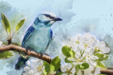 Fill My Heart With Spring, poetry by Bilquis Fatima at Spillwords.com