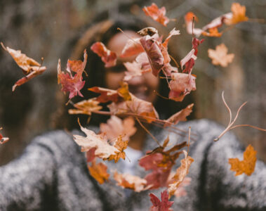 Seasons, poetry written by Megha Sood at Spillwords.com