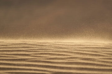 A Tiny Grain of Sand, poetry by R William Standish at Spillwords.com