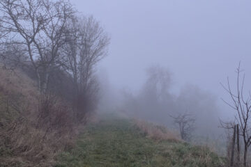 Through The Mist, poetry written by Wolfgang H. at Spillwords.com