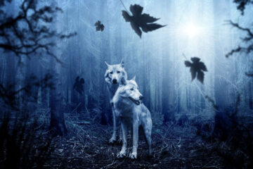 Blue Wolves Move In An Indigo Wood by Eric Robert Nolan at Spillwords.com