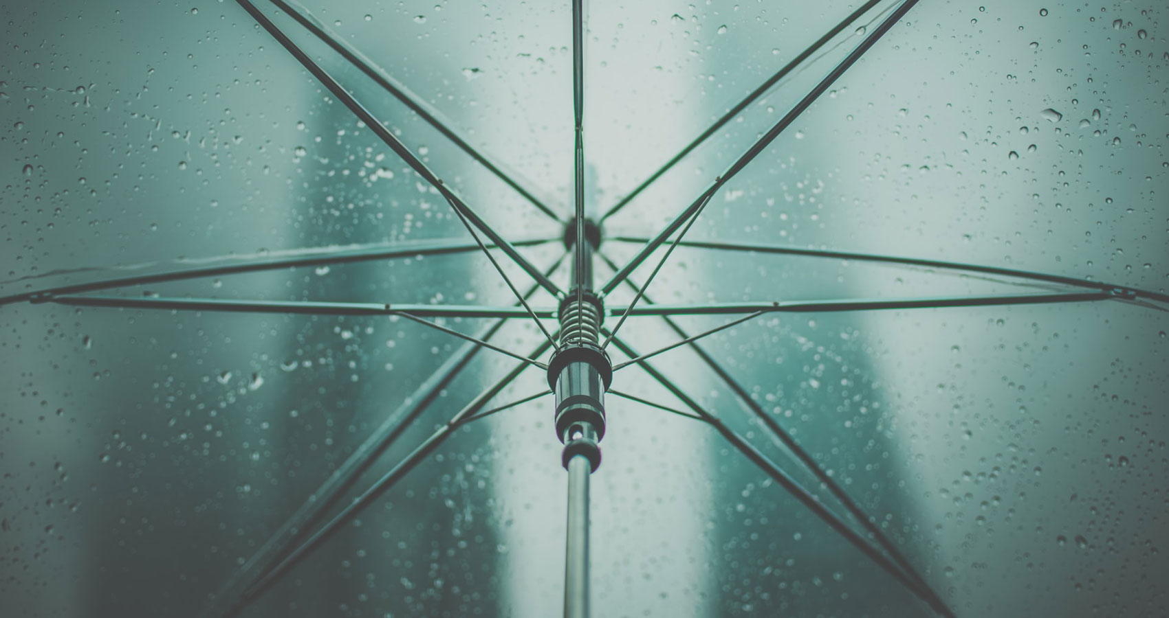 A Homeland of A Size of Umbrella, poetry by Umid Najjari at Spillwords.com