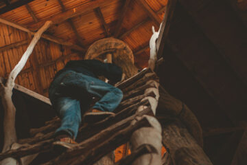 Dave and The Tree House, a short story by Jim Bates at Spillwords.com