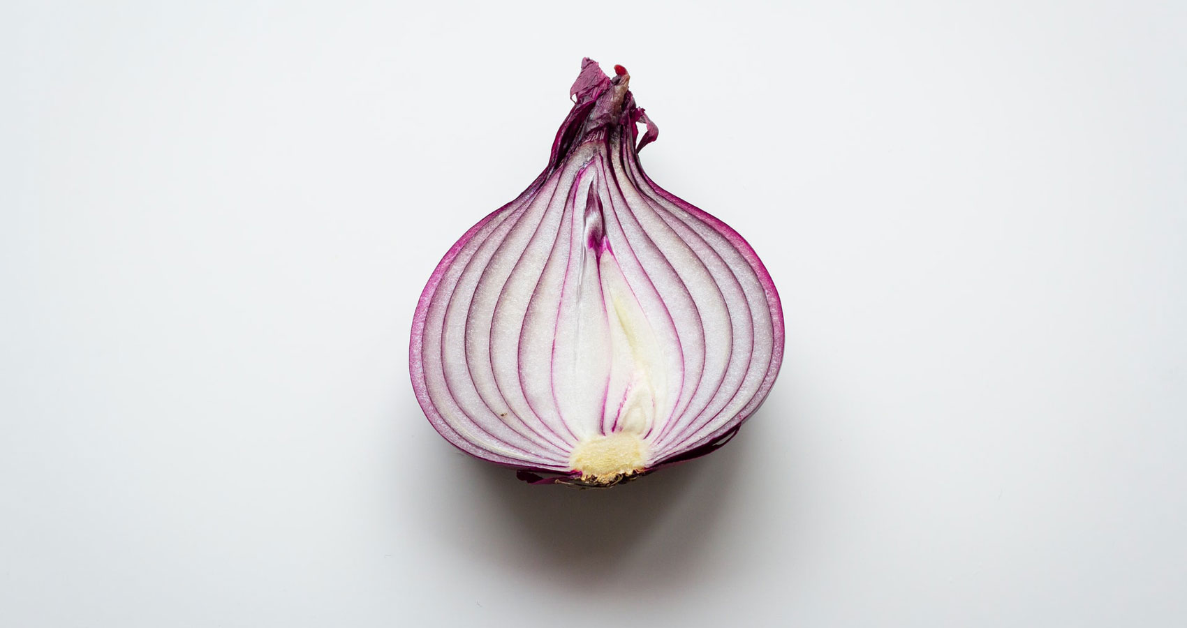 Human Onions, poetry by Fay Marmalich-Vietmeier at Spillwords.com