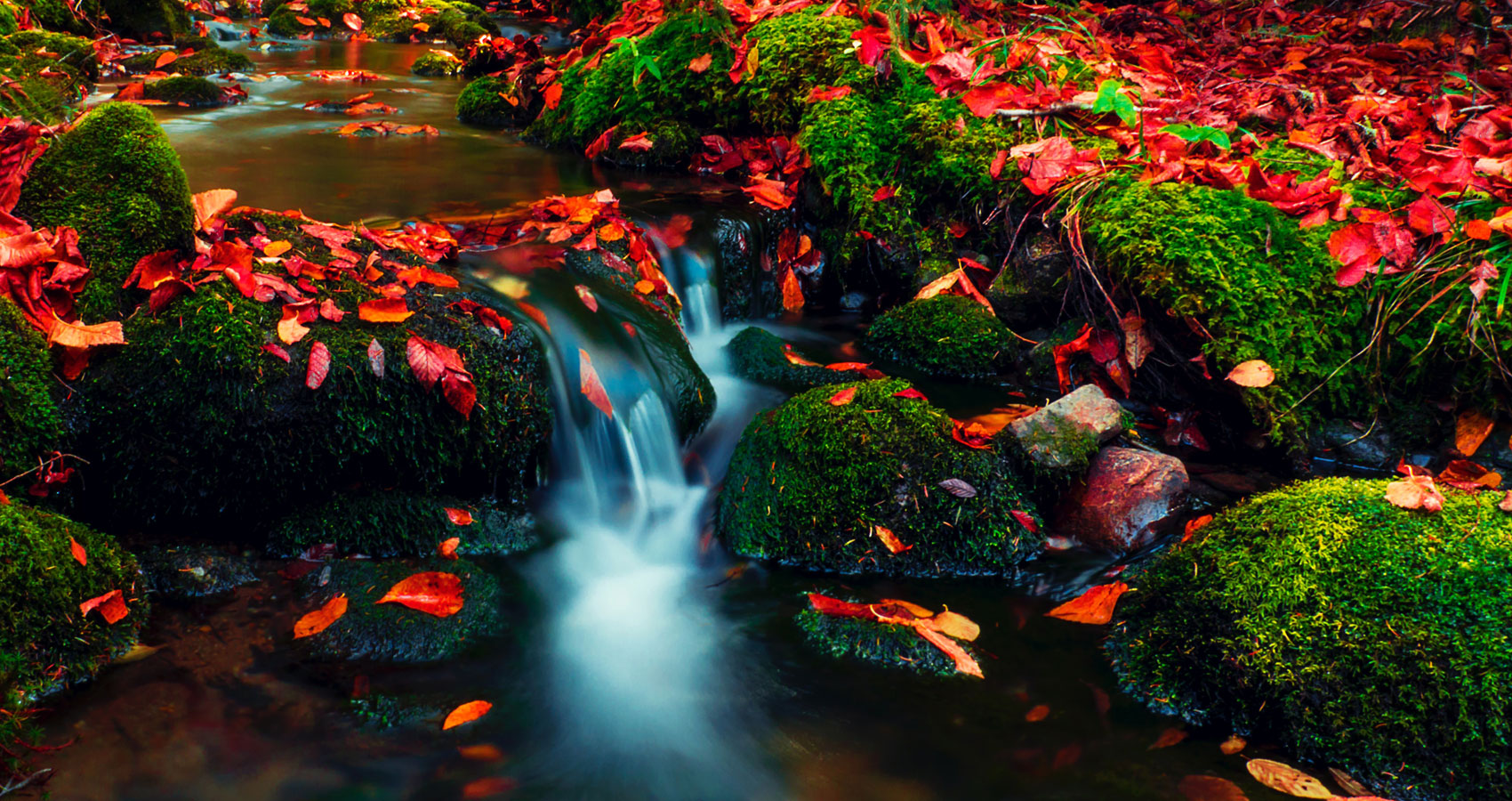 Rivers of Gold, poetry written by CJ Delous at Spillwords.com