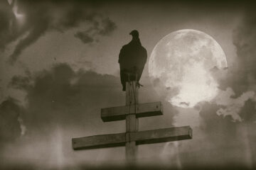 The Night Before Doom's Day, poem by Kira Fulks at Spillwords.com