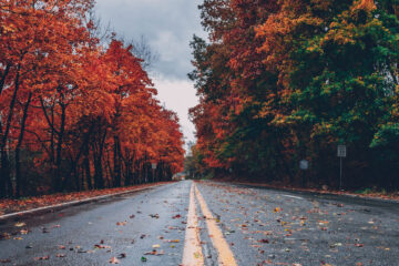 Autumn Leaves, a poem written by Tamar Gvelesiani at Spillwords.com