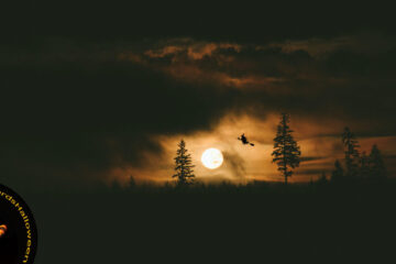 Halloween Fear, poetry by Robin McNamara at Spillwords.com