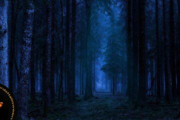 Pagan Night of Samhain, a poem by Löst Viking at Spillwords.com