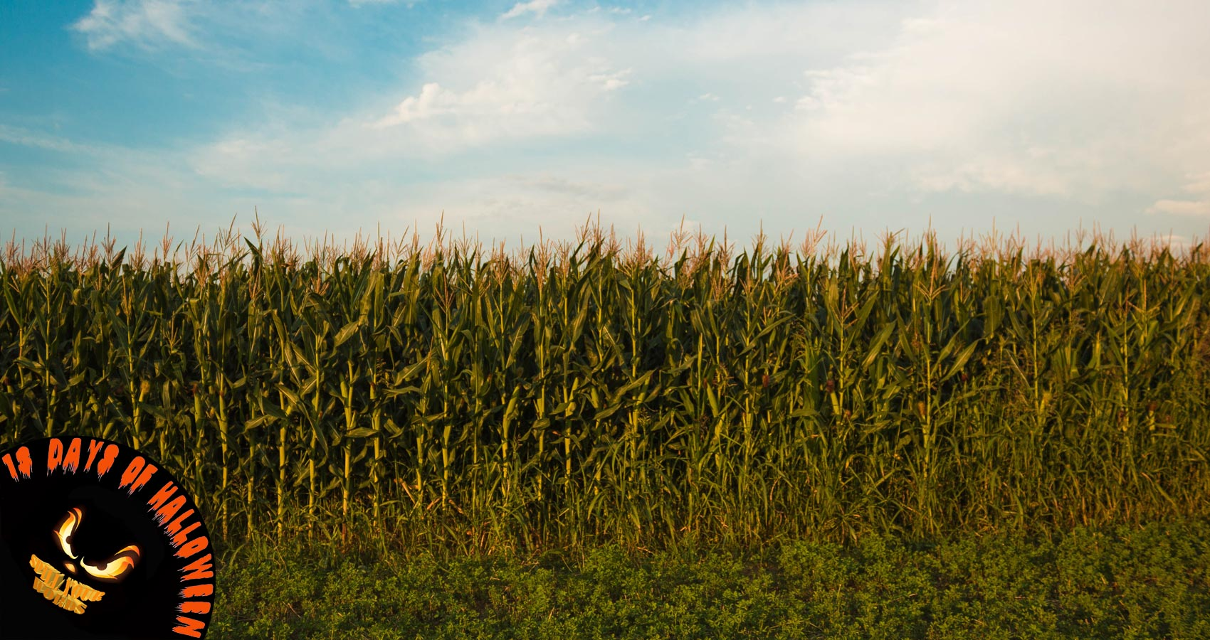 Spirit of The Corn, short story by Richard Prime at Spillwords.com