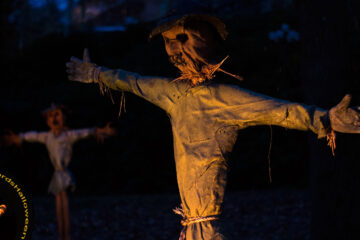 This Scarecrow Road, poetry by Jim Bellamy at Spillwords.com