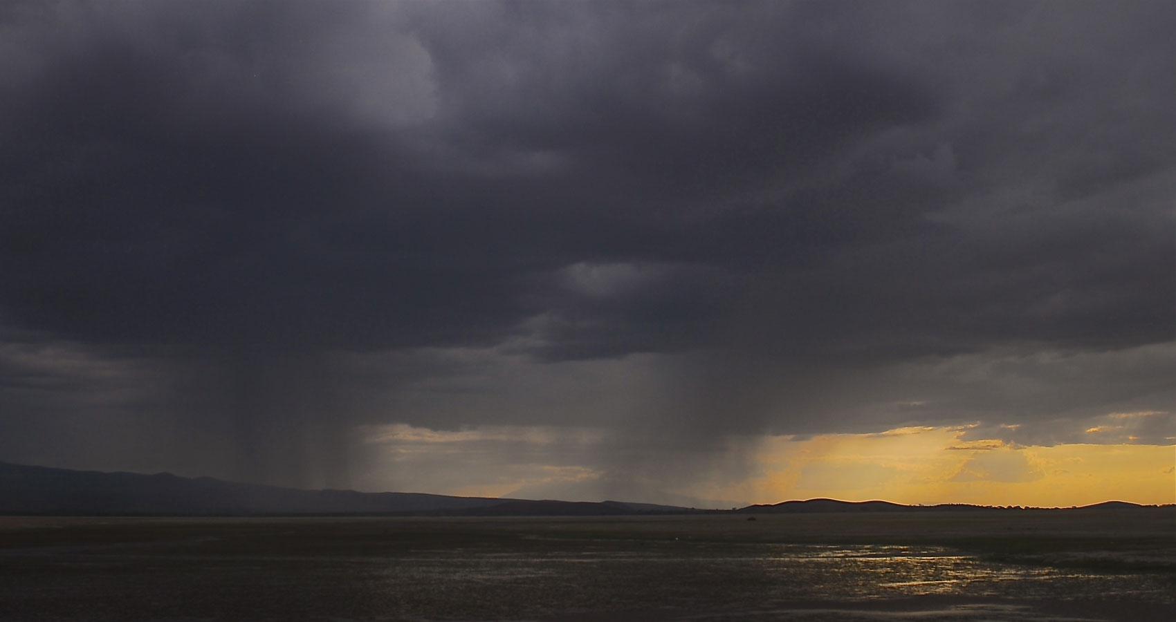 Rain, Rain a poem by Godwin Oyewole at Spillwords.com