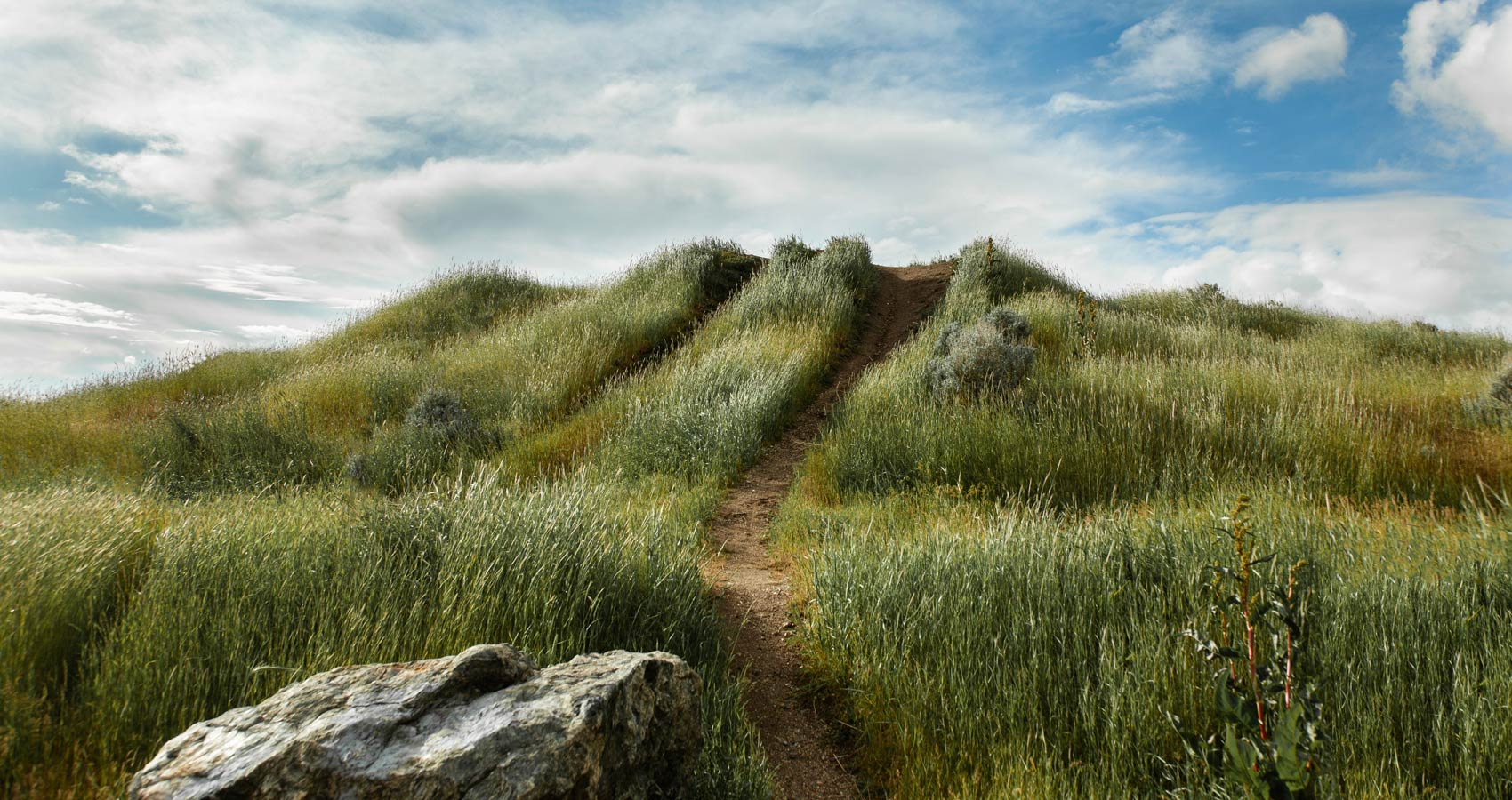 The Path, a poem by Glynn Sinclare at Spillwords.com