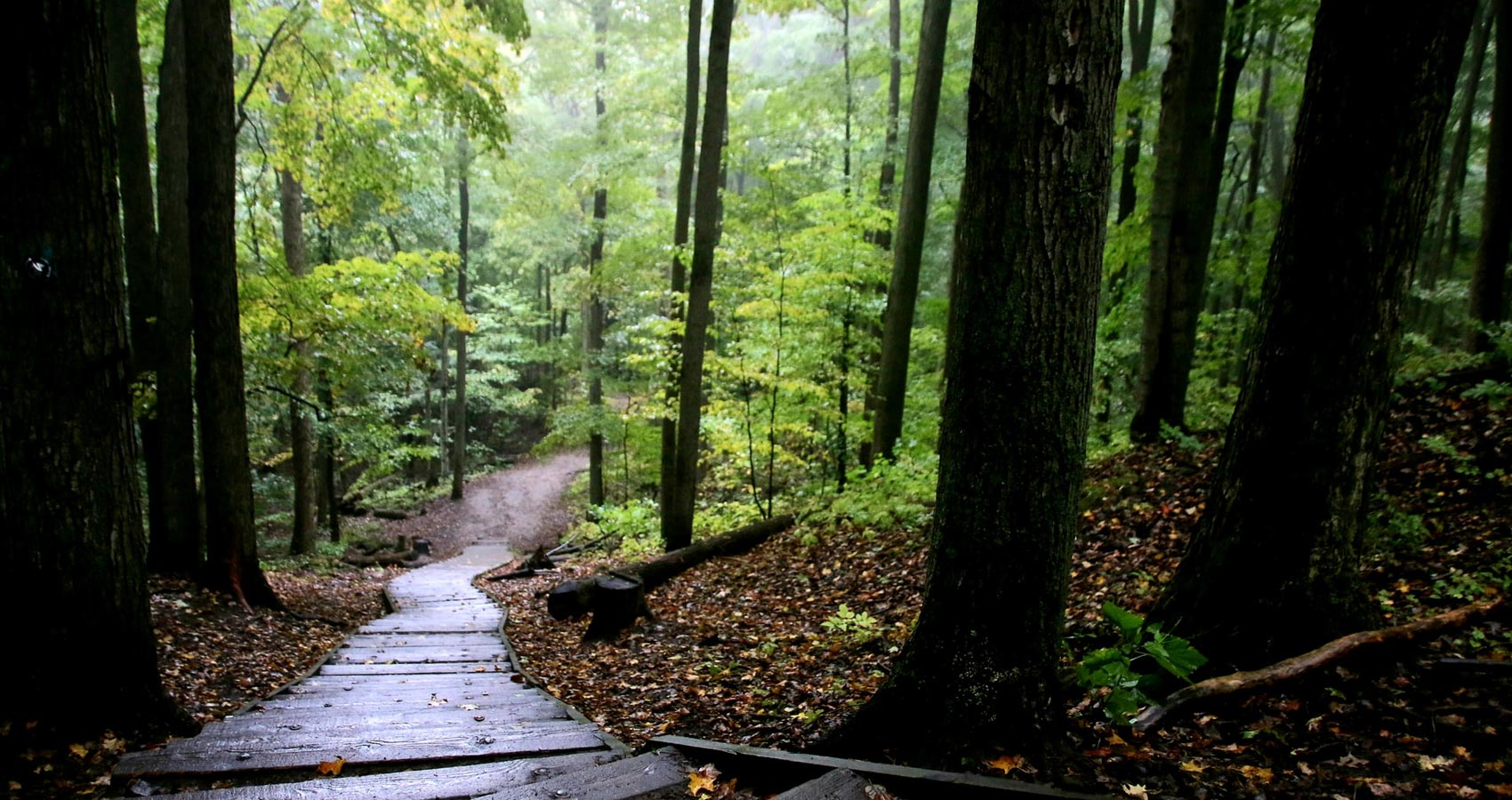 Maine Appalachian Trail Mystery, story by John R. Cobb at Spillwords.com