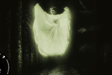 The Spirit of the Season, poetry by Ivanka Fear at Spillwords.com