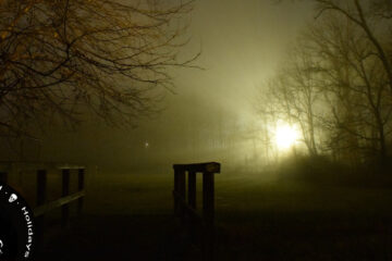 Twilight Silence, poetry by Nima Mohan at Spillwords.com