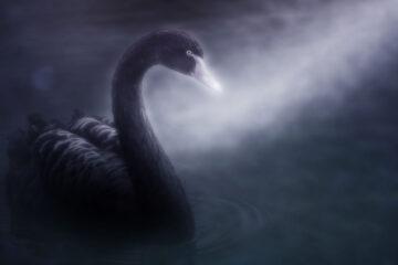 A Christmas Lake, a poem by Löst Viking - John Anthony Fingleton at Spillwords.com