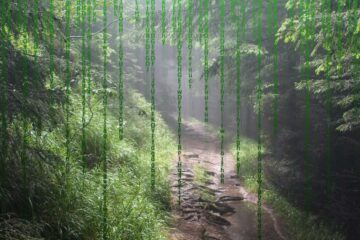 Forging A Path, micropoetry by Bruce Levine at Spillwords.com