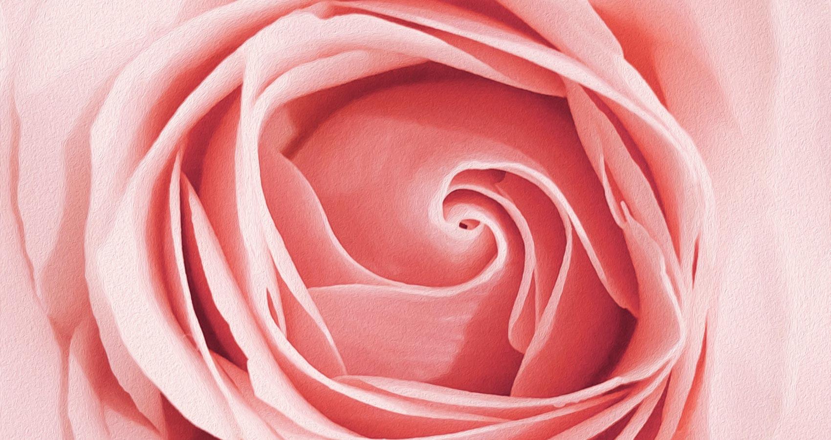 La Vie en Rose, poetry by Bhavya Prabhakar at Spillwords.com