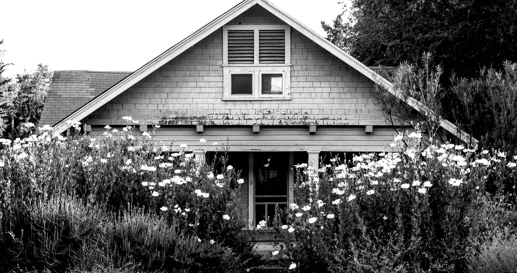 The Maple Cottage, short story by James Marchiori at Spillwords.com