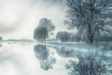 The Silver Season, a poem written by LadyLily at Spillwords.com
