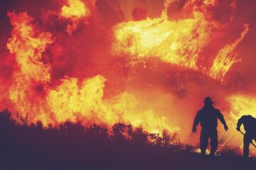 As The Forest Burned, a poem by Tina McFarlane at Spillwords.com