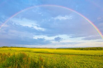 Rainbow Highlights, poetry by Marie Johnson-Ladson at Spillwords.com