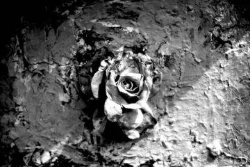 Death, a haiku written by Arnab Kumar Roy at Spillwords.com