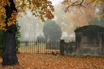 The Graveyard Keeper, fiction by Somsubhra Banerjee at Spillwords.com