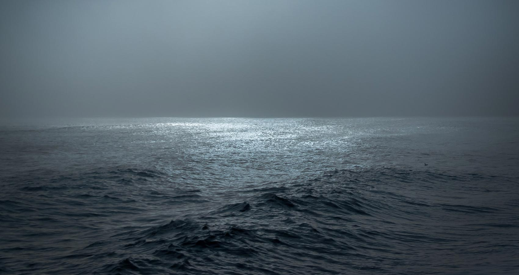 Absence of Light, a poem by Selvan Muruvan at Spillwords.com