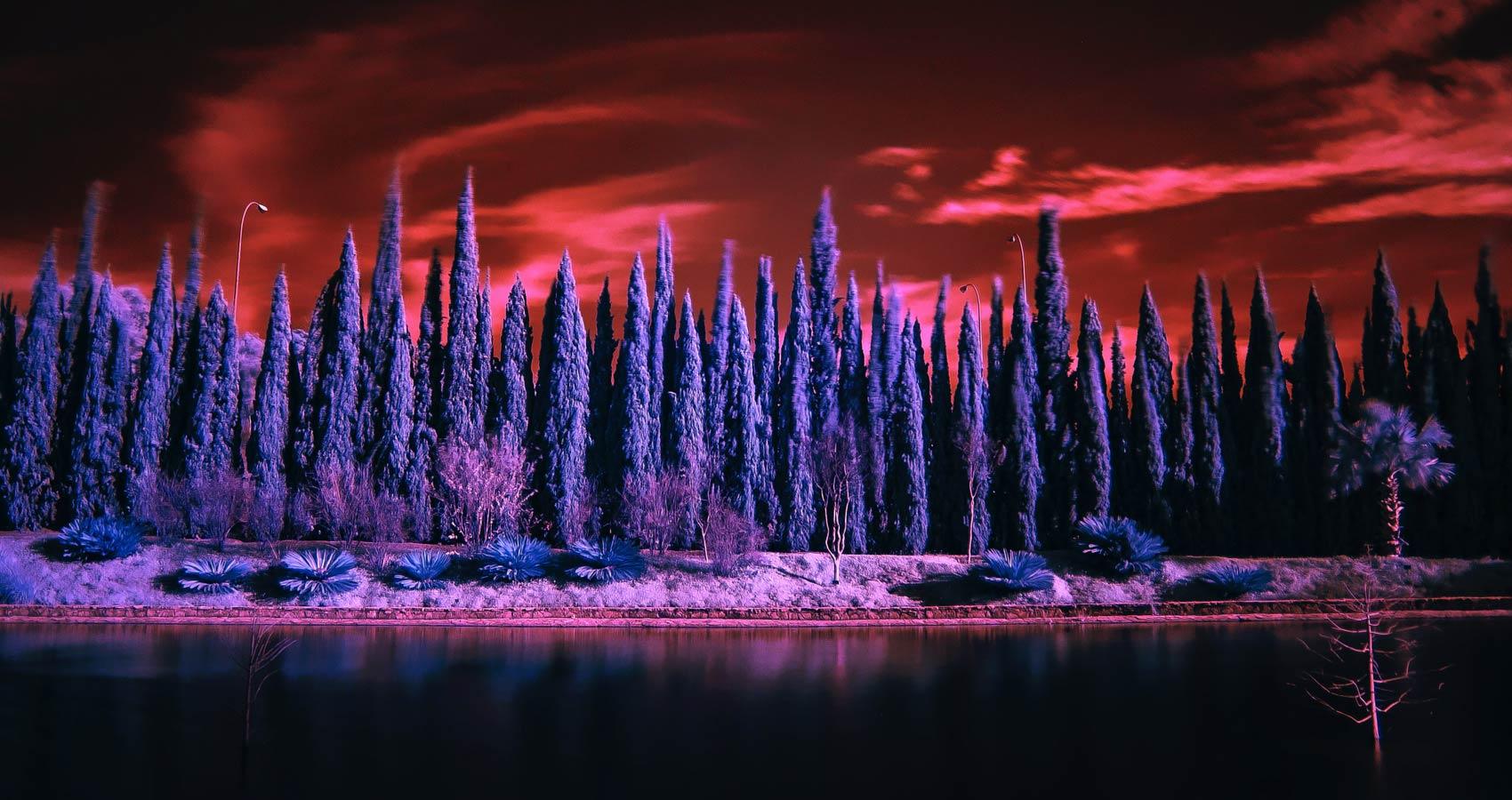 The Land of Poets, a haibun by Pragya Singh at Spillwords.com