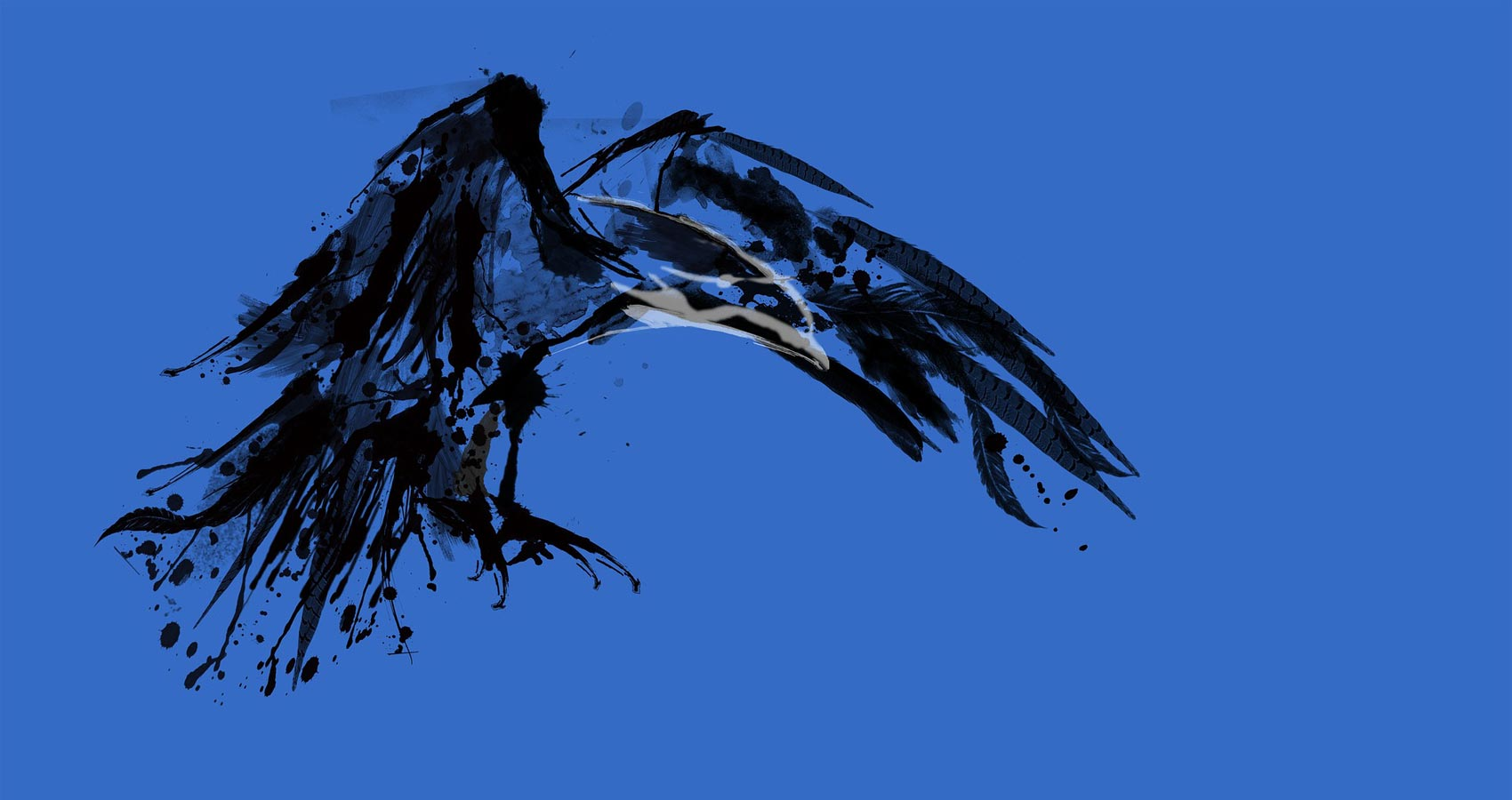 My Omen Crows, a poem by Paul Thwaites at Spillwords.com