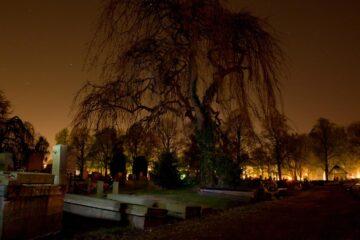 Darkness Waits, a poem written by Verona Jones at Spillwords.com