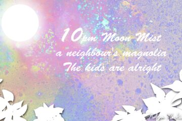 Moon Mist and Magnolias, a haiku by Robyn MacKinnon at Spillwords.com