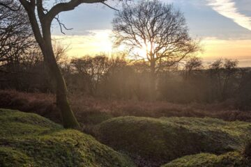On Hudnall Common, poetry by Julian Mann at Spillwords.com