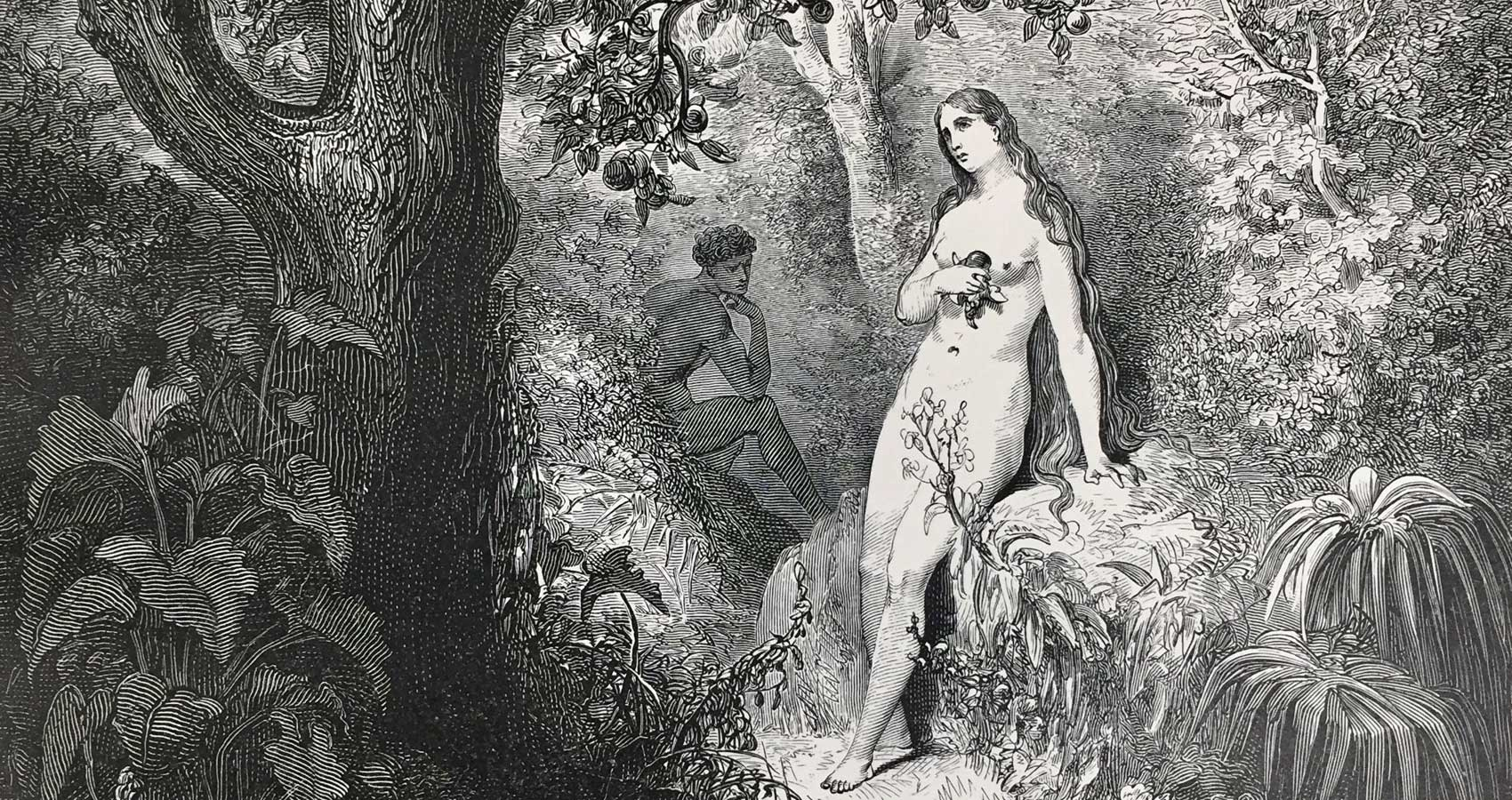Paradise Lost, poetry written by Lynn White at Spillwords.com