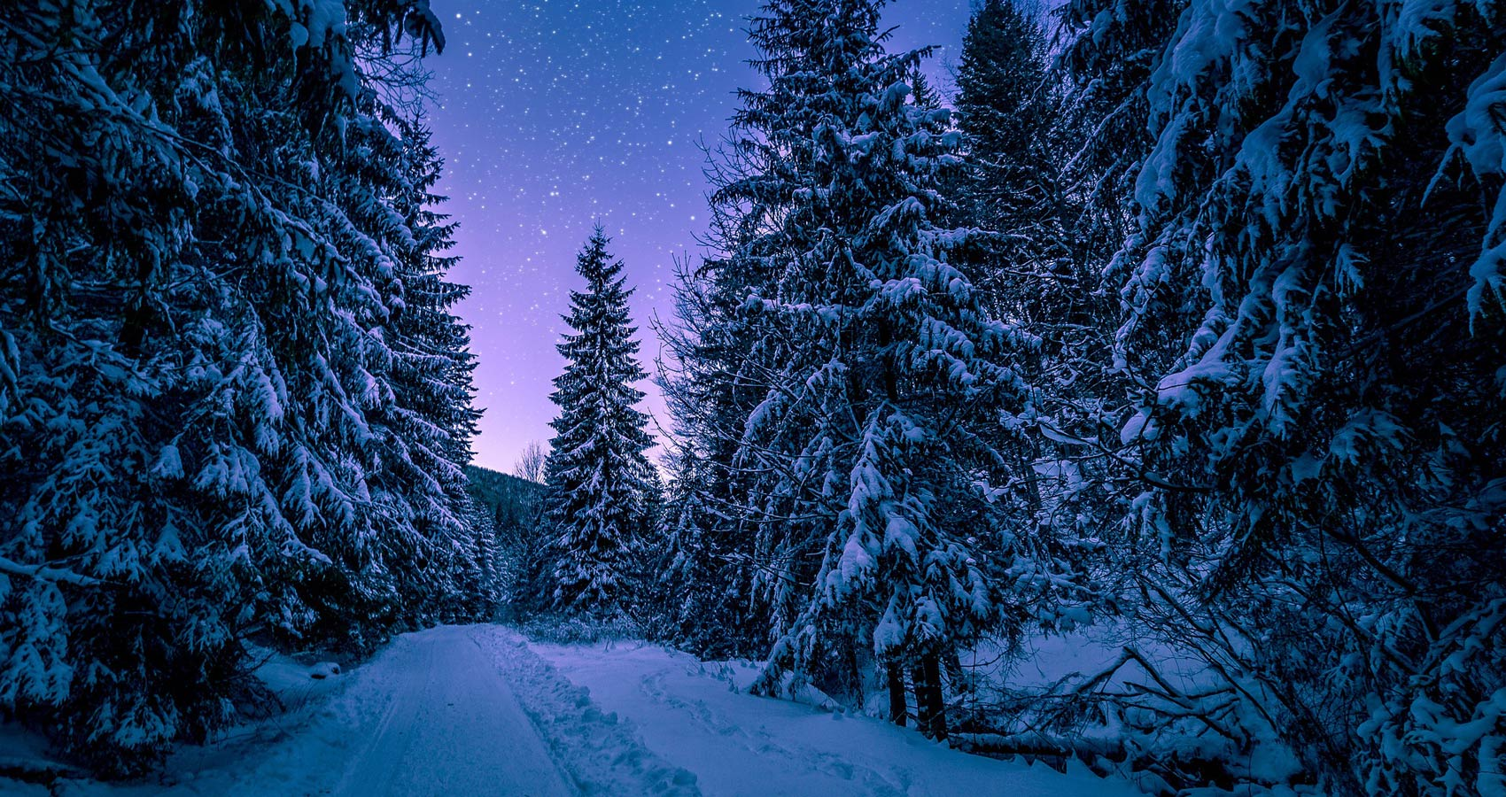 The Silence of Snow, a short story by Kate Aranda Nye at Spillwords.com