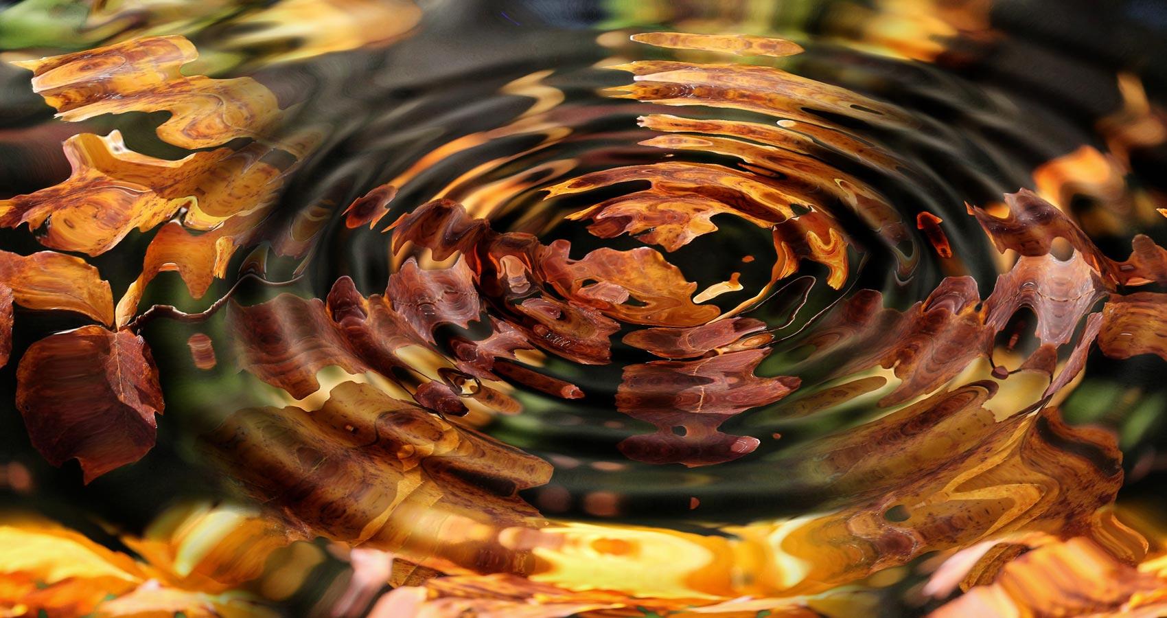 Falling Tender Leaves, a haiku by Kritika at Spillwords.com