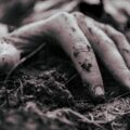In Resting Soil, poetry by Robin McNamara at Spillwords.com